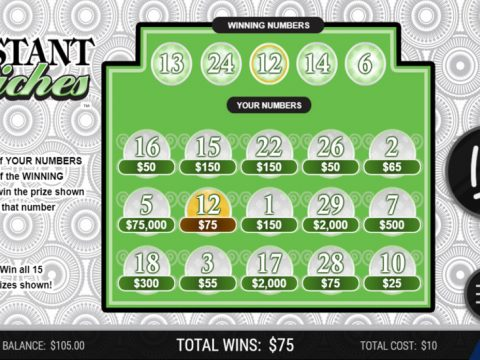 Michigan Lottery Instant Riches winning ticket