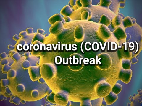 Michigan response to Coronavirus 2019 (COVID-19) outbreak