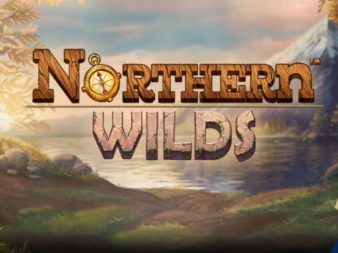 The New online game - Northern Wilds game logo